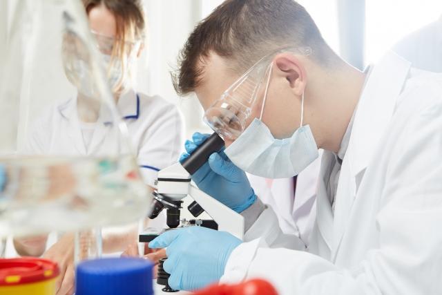 """明治大学が申請した""""ヒトの膵臓をブタで作製する""""研究計画を国が了承!"""